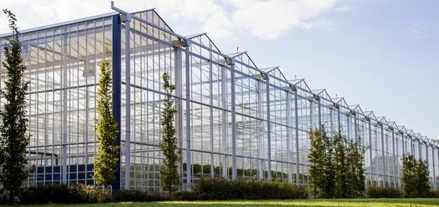 ساخت گلخانه های شیشه ای