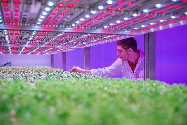 تجهیزات گلخانه ای - وسایل کنترل نور