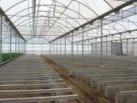 انواع سازه های گلخانه از نظر کاربرد