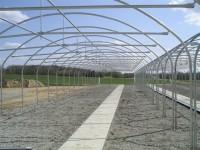 هزینه یا قیمت ساخت سازه گلخانه