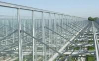 گالری تصاویر گلخانه شیشه ای ساخت گلخانه سازه گلخانه