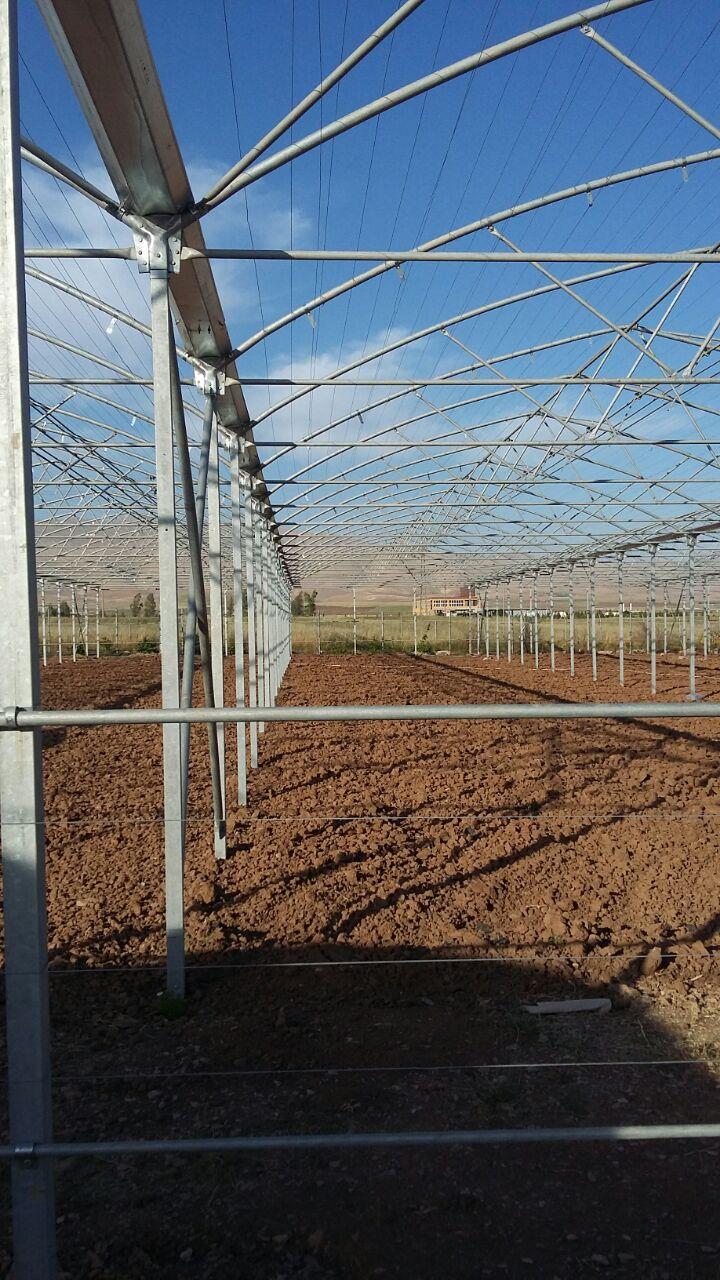ساخت گلخانه پلاستیکی سلیمانیه عراق-حاجی سواره