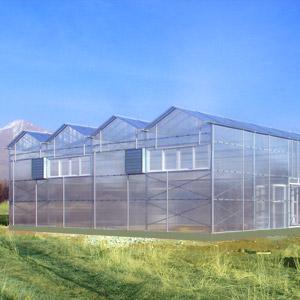 ساخت گلخانه با پوشش پلی کربنات