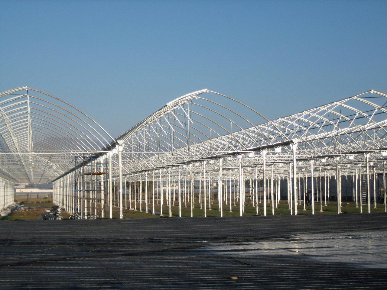 ساخت گلخانه|سازه گلخانه|سازنده گلخانه|گلخانه ساز|شرکت گلخانه ساز